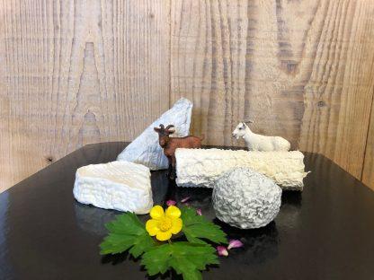 Plateau de fromage chevre